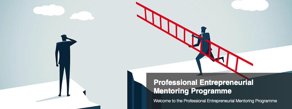 'Professional entrepreneurial mentoring Programme'